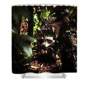 Swamp Raccoon Shower Curtain