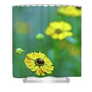 Swamp Sunflower Shower Curtain