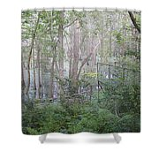Photo Of Swamp Shower Curtain