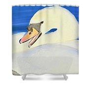 Swan 10 Shower Curtain