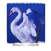 Swan At Cape May Point State Park  Shower Curtain