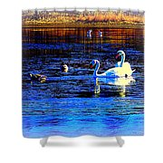 When It Seems Like The Swans Are Ruling The Sea  Shower Curtain by Hilde Widerberg