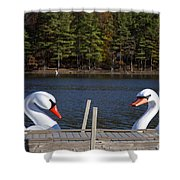 Swan Boats Shower Curtain by Joanna Madloch