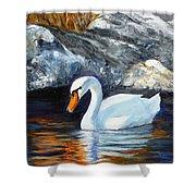 Swan By Rocks Shower Curtain