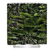 Swan Creek Foliage Shower Curtain