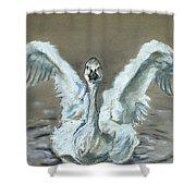 Swan Dance Shower Curtain