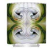 Swan Dancing Shower Curtain