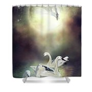 Swan Dreams Shower Curtain