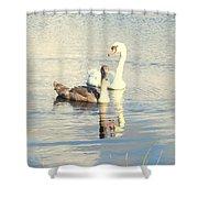 Swan G Shower Curtain