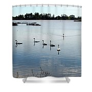 Swan Hangout Shower Curtain