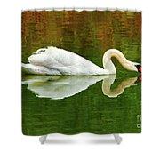 Swan Heart Shower Curtain