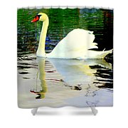 Who Is Afraid Of The Big White Swan  Shower Curtain by Hilde Widerberg