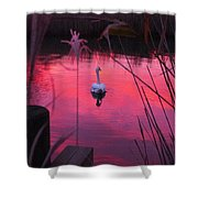 Swan In A Sunset Shower Curtain