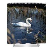 Swan In Blue Pond Shower Curtain