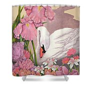 Swan In Pink Shower Curtain