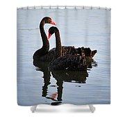 Swan Lake 5 Shower Curtain