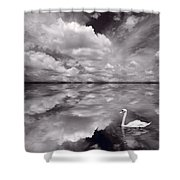 Swan Lake Explorations B W Shower Curtain