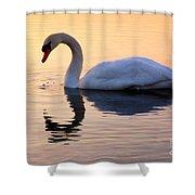 Swan Lake Shower Curtain