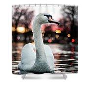 Swan Lake Night 2 Shower Curtain