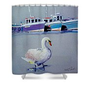 Swan Lake With Pleasure Boats Shower Curtain