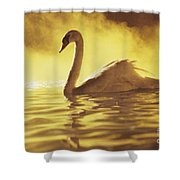 Swan On Gold Shower Curtain