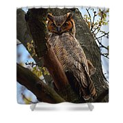 Swan Point Great Horned Owl Shower Curtain