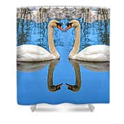 Swan Princess Shower Curtain