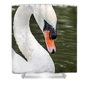 Swan Profile Shower Curtain