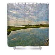 Swan River Morning Shower Curtain