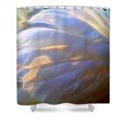 Swan Wing One Shower Curtain