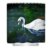 Swan With Twig Shower Curtain