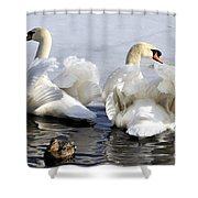 Swans And Duck Shower Curtain