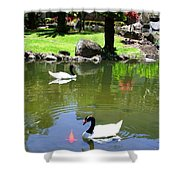 Swans And Gold Fish Shower Curtain