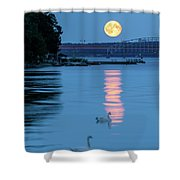 Swans And The Moonrise In Stockholm Shower Curtain