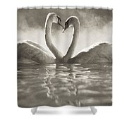 Swans In Lake Shower Curtain
