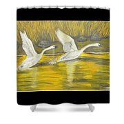 Swans In The Fall In Montana Shower Curtain
