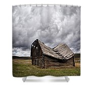 Sway Back Shower Curtain by Leland D Howard