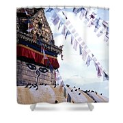 Swayambhunath II Shower Curtain