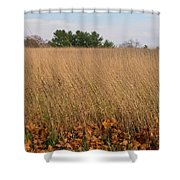 Swaying To The Music - 2153 Shower Curtain