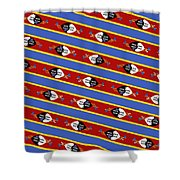 Swaziland Flag 3 Shower Curtain