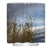 Sweeping The Clouds Away Shower Curtain