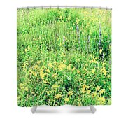 Sweet And Lovely Shower Curtain