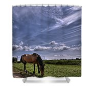 Sweet Country Scents Shower Curtain
