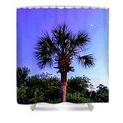 Sweet Dreams Carolinas Shower Curtain