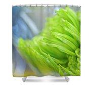 Sweet Green Mum Shower Curtain