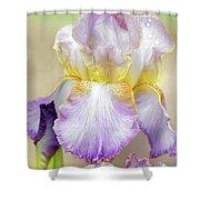 Sweet Iris Pastel Shower Curtain