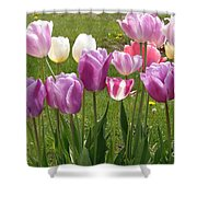 Sweet Lips Shower Curtain