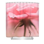 Sweet Lonesome Rose Shower Curtain