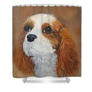 Sweet Maggie Shower Curtain