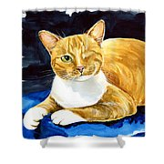 Sweet Melon - Ginger Tabby Cat Painting Shower Curtain